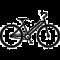 vrouwen-fiets